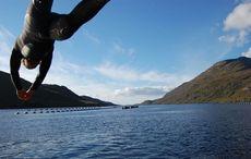 Thumb_web-killary_fjord_swim_shane_young