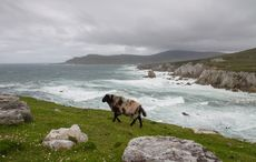 Thumb achill island mayo getty
