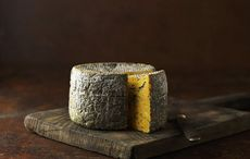 Thumb cheese gettyimages 525389327