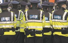 Thumb lisa smith arrest irish senator   rollingnews
