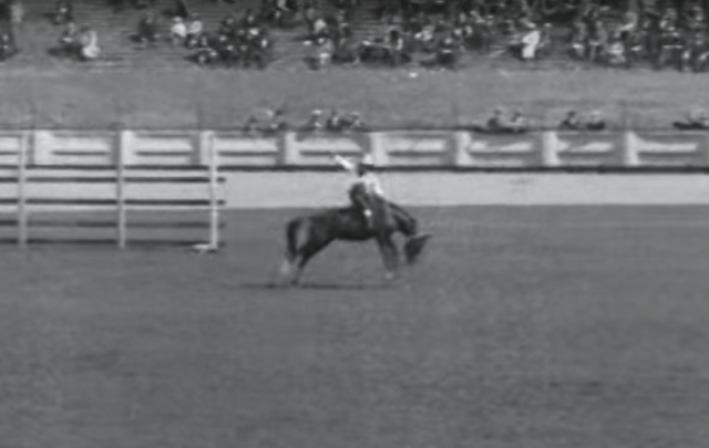 The Tex Austin Rodeo in action, at Croke Park in Dublin, 1924.