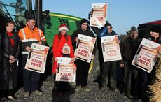 Thumb farmers protests over beef prices rollingnews