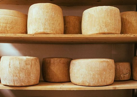 Cheese, glorious cheese! An Irish expert talk about the process of how Ireland\'s cheese is made.