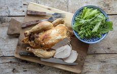 Thumb elizabeth o connell roast chicken