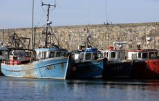 Thumb fishing trawlers  boats  in kilmore quay in county wexford rollingnews