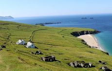 Thumb great blasket island job posting   great blasket island fb