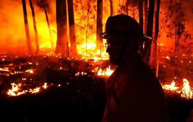 a firefighter tackles an Australian bushfire