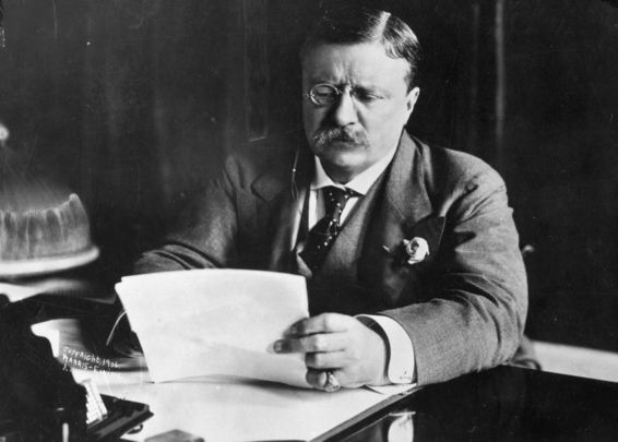 Theodore Roosevelt: The 26th president of the United States was critical of Irish immigrants