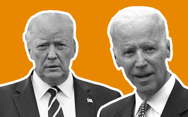 Donald Trump, Joe Biden, or someone else - who are you supporting?