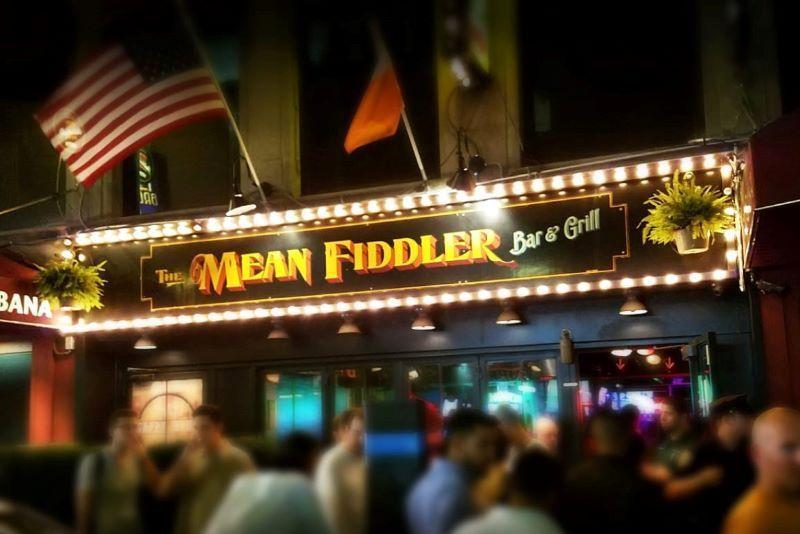 Irish in New York - cover