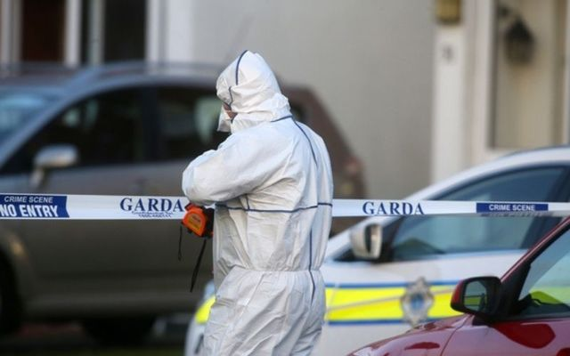 Gardaí investigate the murder of Seema Banu and her two children in Ballinteer.