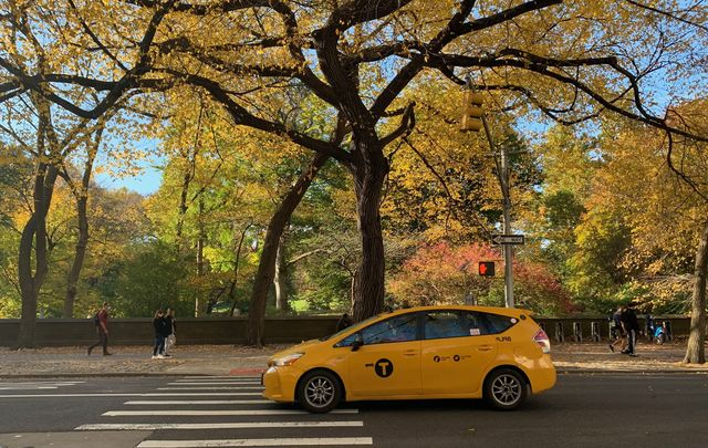 A yellow taxi in front of New York City\'s Central Park.