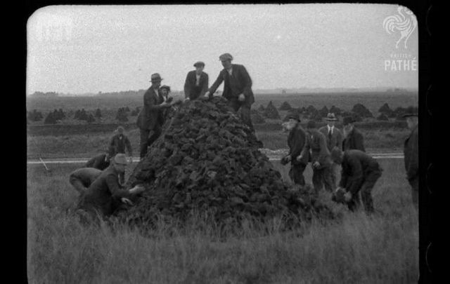 Scenes of an Irish community gathering peat a century ago.
