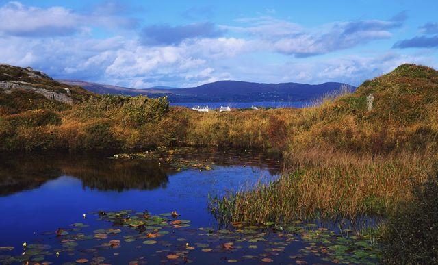 Dunmanus Bay, on the Mizen Head Peninsula, in County Cork.