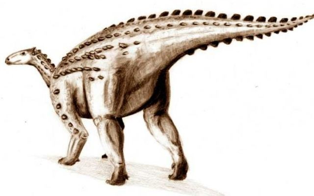 One of the bones could have belonged to a scelidosaurus, a herbivore that roamed the earth over 190 million years ago.