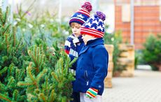 This Christmas as you decorate your tree consider planting your Irish roots in Ireland