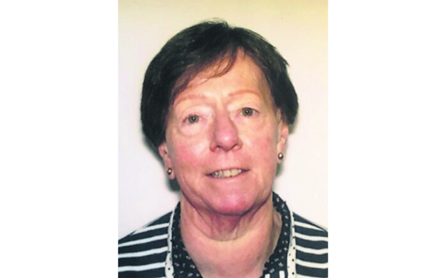 Tipperary independent candidate Marese Skehan passed away suddenly.