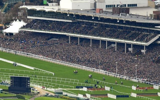 Thousands of Irish people attended the Cheltenham Racing Festival