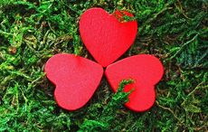 Thumb mi heart shamrock romantic ireland valentines love getty  3