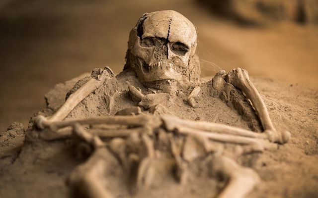 The bones could alter how we think about Irish ancestry.