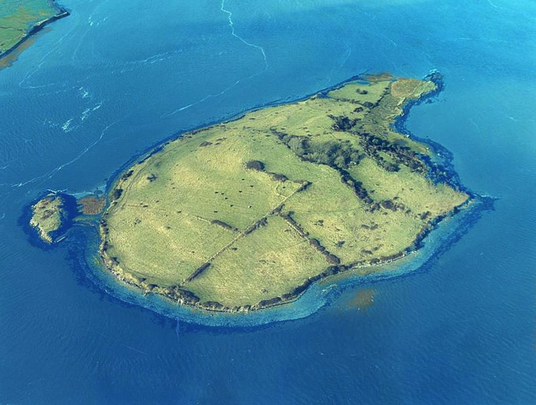 Shore Island, in the Shannon Estuary, County Clare.