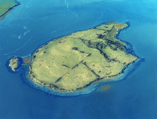 Shore Island, in the Shannon Estuary, County Clare.