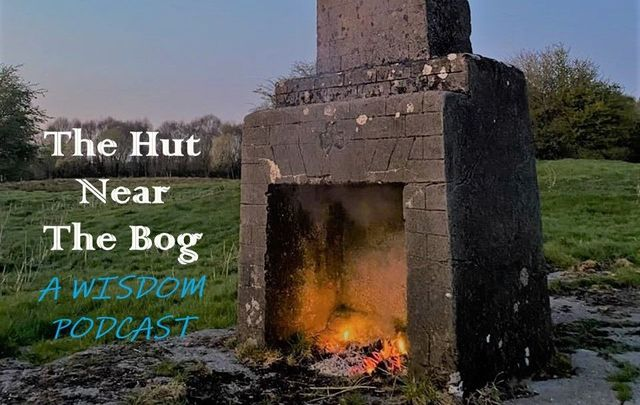 The Hut Near The Bog