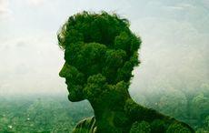 Love a Tree Day: Irish Heritage Tree planting native trees in Ireland