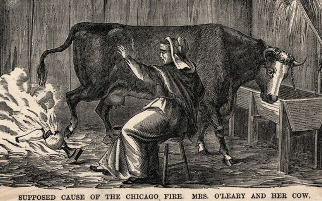 A woman has found out that she\'s related to Catherine O\'Leary of the Great Fire of Chicago legend