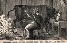 How a DNA test led a Chicago woman to find family ties to Mrs O'Leary of the Great Fire fame