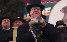 The Irish roots behind America's Groundhog Day