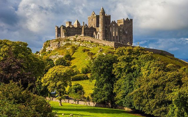 Rock of Cashel, County Tipperary: IrishCentral and the Tree Council of Ireland have secured a site in the magnificent Golden Vale, Tipperary.
