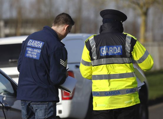 Police investigate: Three elderly brothers found dead in and around on Cork farm.
