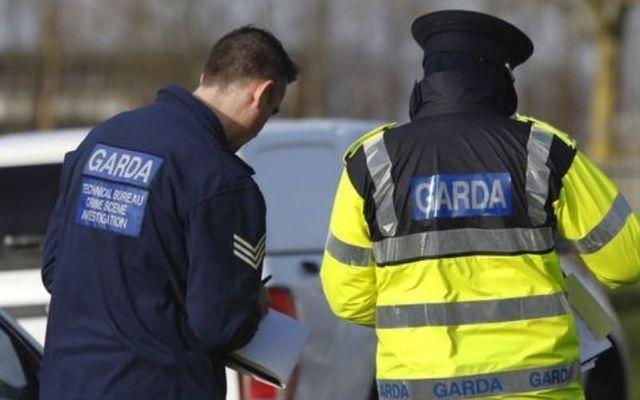 Police investigate: Three elderly brothers found dead in and around on Cork farm.