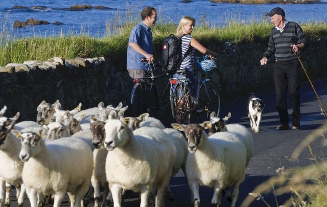 Talk like an Irish local: A local farmer on the Carrickmore Road, in Ballycastle, County Antrim, chats with some cyclists.