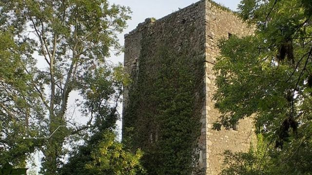 Vandals have damaged the 600-year-old castle