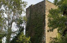 Locals battle to save Irish castle being destroyed by vandals