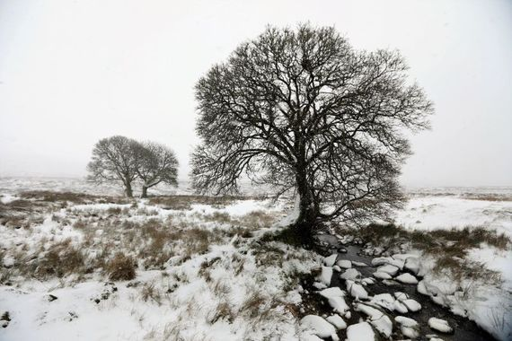 Ireland could see a return of wintry conditions on Friday night.