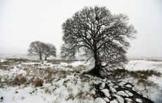 Ireland set for snow on Friday night as temperatures expected to plummet