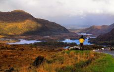 """Killarney National Park sustains """"horrendous"""" damage from three-day wildfire"""