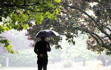 An emigrant's praise of Irish rain