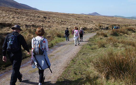 Walking the Kerry Camino