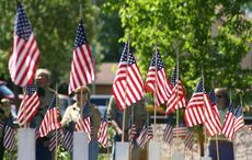 This Memorial Day, Irish Heritage Tree remembers those who have passed