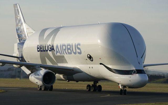 The Beluga Airbus XL.