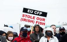 Ireland's fishermen and farmers fight the Brexit fallout