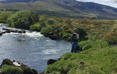 In Ireland, the fishing is almost as good as the pubs