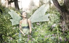 Ireland takes fairies more seriously than you might think