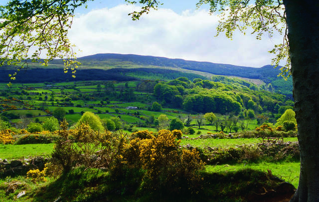 Slieve Gullion, County Antrim: Redmond O'Hanlon was born circa 1640, closeby, near Poyntzpass.