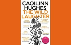 """IrishCentral's Book of the Month: """"The Wild Laughter"""" by Caoilinn Hughes"""