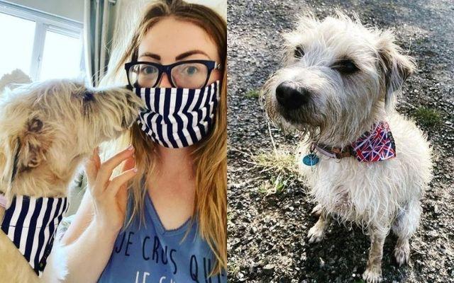 Sarah McCarthy with her terrier Rita